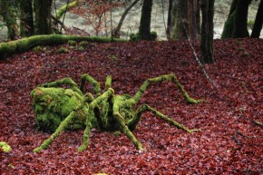 sylvain-meyer-land-art-installations-5